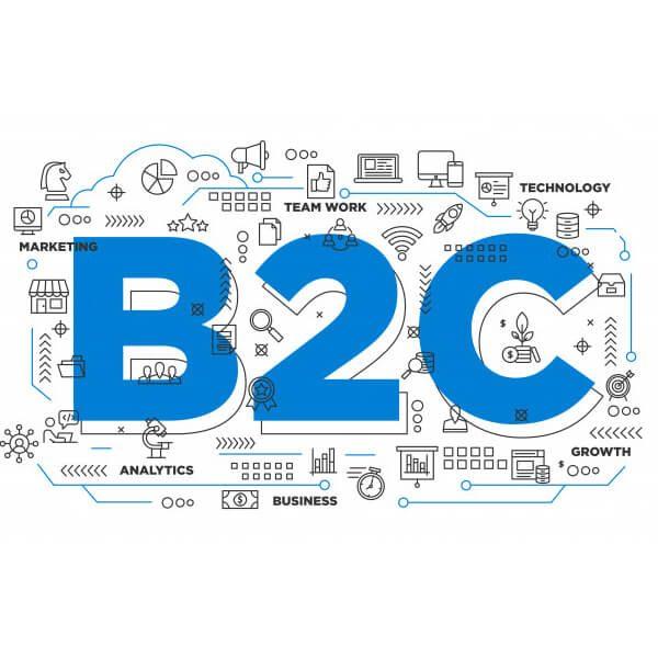 B2C nedir